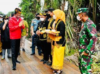 Tiba di Tana Tidung, Presiden Disambut Prosesi Adat Tepung Tawar