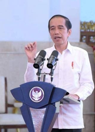 Presiden Targetkan Food Estate Dilaksanakan Tahun Ini